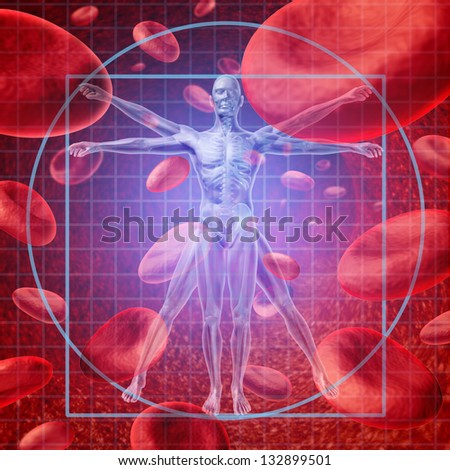 Health care research medical concept with a Vitruvian human skeleton man and body with a group of floating red blood cells circulating in a vein. - stock photo