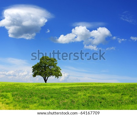 Health ecology - stock photo