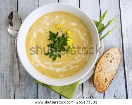 Healthy and delicious butternut squash soup - stock photo