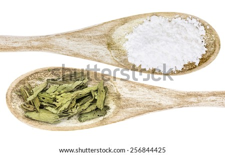 healthy and unhealthy sweetener concept - isolated wooden spoons of white cane sugar and stevia leaf - stock photo