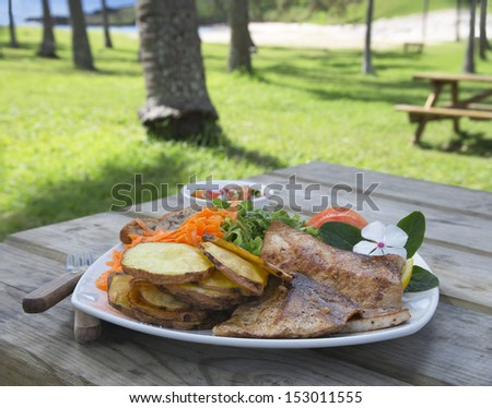 Healthy bbq lunch under shadow of palms on the beach. - stock photo