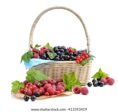 Healthy berries in basket. - stock photo