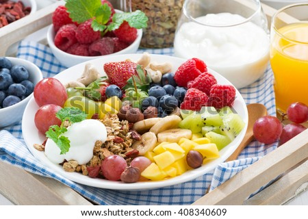 healthy breakfast - berries, fruit and cereal on the plate, close-up, horizontal - stock photo