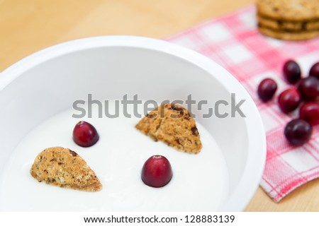 Healthy breakfast containing natural yogurt, wholemeal cereal biscuits and fresh cranberries - stock photo