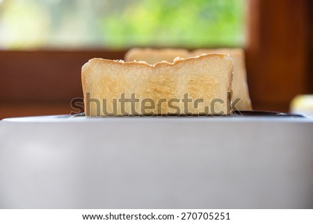 Healthy breakfast with bread toaster. - stock photo