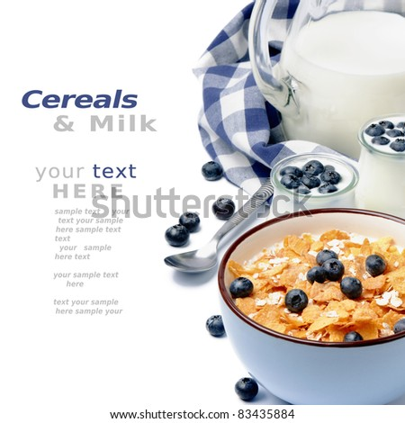 Healthy breakfast with cereal and blueberry - stock photo