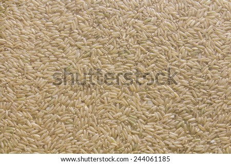 Healthy brown rice in vacuum packs - stock photo