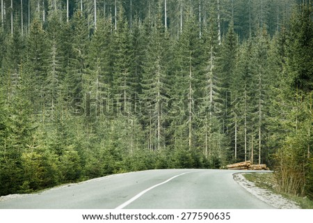 Healthy coniferous forest with timber logs beside desolate road, prepared for transportation in a wilderness area of national park. Sustainable timber industry and healthy environment concepts.  - stock photo