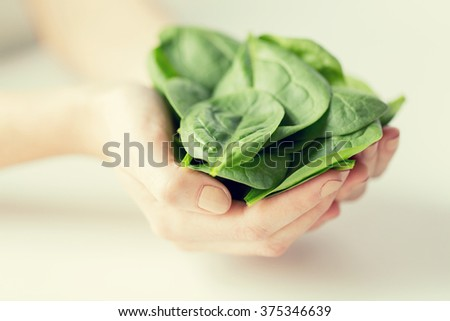 healthy eating, dieting, vegetarian food and people concept - close up of woman hands holding spinach at home - stock photo