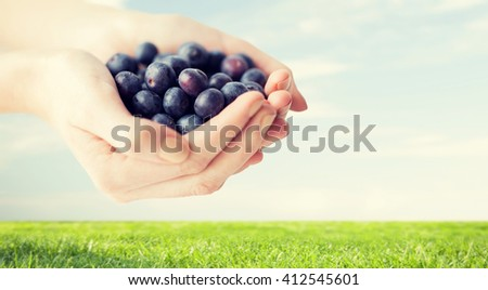 healthy eating, dieting, vegetarian food and people concept - close up of woman hands holding ripe blueberries over grass and blue sky background - stock photo