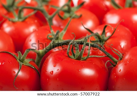 Healthy eating red ripe raw vegetable tomato food - stock photo