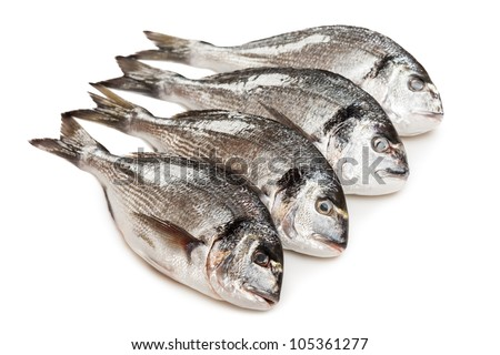 Healthy eating seafood - raw gilt-head fish food heap white isolated