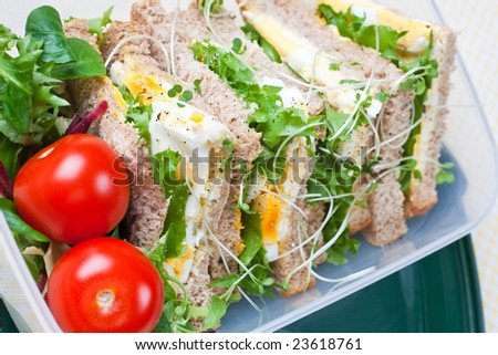 Healthy egg sandwich with salad and tomatoes - stock photo