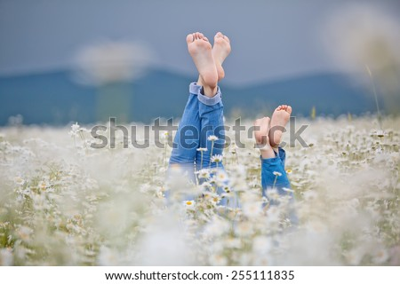 Healthy feet of family with daisy flowers on green grass against blurred spring background. Farmland vacations concept - stock photo
