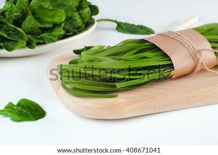 Healthy food concept: green raw italian pasta and its natural vegetable dye (spinach) on wooden desk, over light background. Shot in shallow depth of field - stock photo