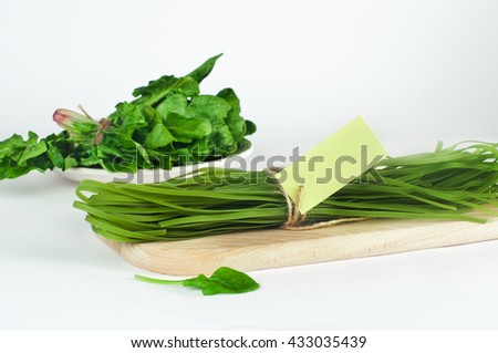 Healthy food concept: green raw italian pasta and its natural vegetable dye spinach with empty card for text, over light background. Shot in shallow depth of field