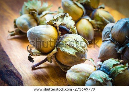 Healthy food full of fatty acids, organic nutrition. Hazelnuts cluster filbert nuts in hard shell on rustic old wooden table. - stock photo