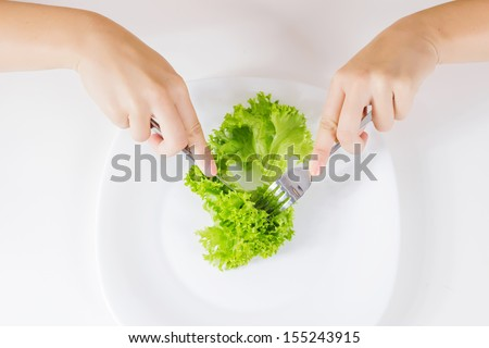 Healthy food green salad for meal. - stock photo