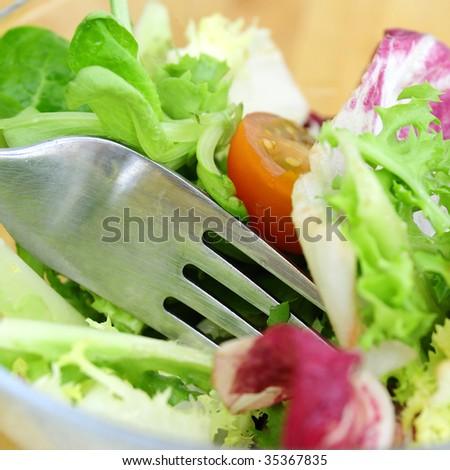 Healthy food. Salad and tomatoes - stock photo