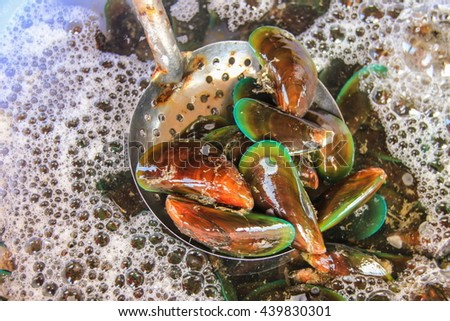 Healthy Food. Seafood Background. Closeup Of Fresh Gourmet Asian Green Mussels ( Perna Viridis, Green-lipped Mussels, Oysters ) At Fish Market - stock photo