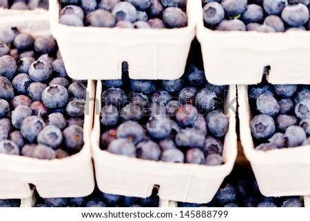 healthy fresh blueberries macro closeup on market outdoor summer