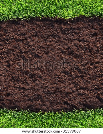Healthy grass and soil background similar available in my portfolio - stock photo