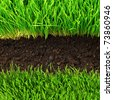 healthy grass and soil pattern - stock photo
