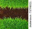 healthy grass growing in soil pattern - stock photo