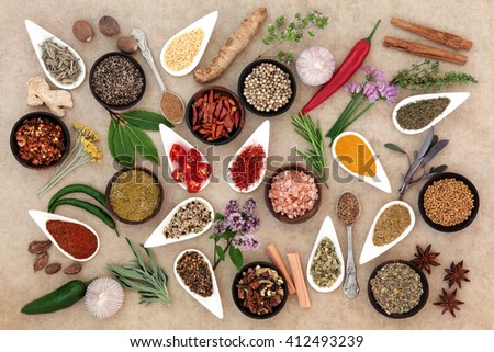 Healthy herb and spice fresh and dried food seasoning over natural hemp paper background. - stock photo