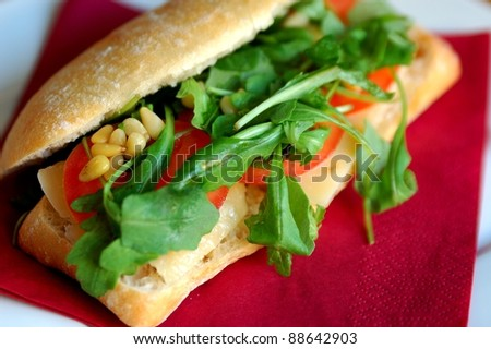 Healthy italian sandwich with parmesan cheese.