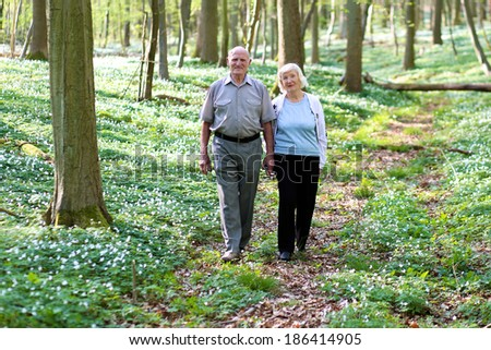 Healthy loving senior couple relaxing in beautiful summer forest - active retirement concept - stock photo