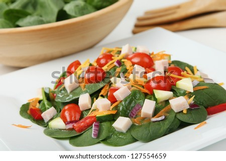 Healthy Main-Course Spinach Salad with Turkey on a White Plate (with focus on front edge of salad) - stock photo