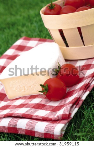 healthy picnic on summer field - stock photo