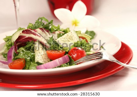 Healthy Salad on a Plate With Focus on Tomatoes and Cucumbers - stock photo