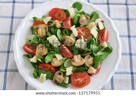 Healthy Salad with mushrooms, tomatoes and cheese - stock photo
