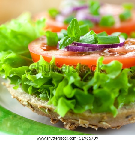 Healthy sandwich close-up - stock photo