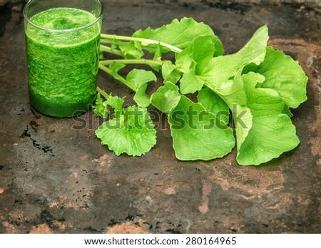Healthy smoothie of fresh green radish leaves. Vegetarian food. Detox concept - stock photo