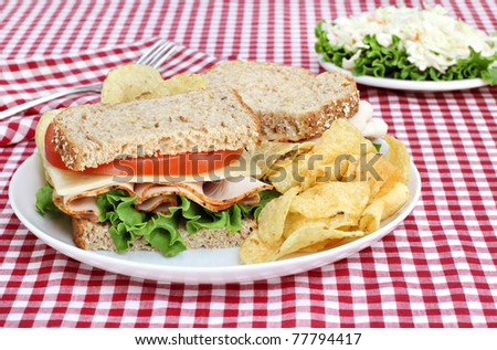 Healthy turkey, swiss, lettuce and tomato sandwich on wholesome multi grain bread.  Set, picnic style, on a red checked tablecloth.