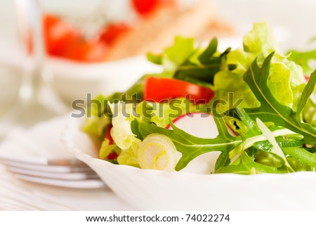 Healthy vegetable salad with lettuce, spring onion, rocket salad, tomatoes and radish - stock photo