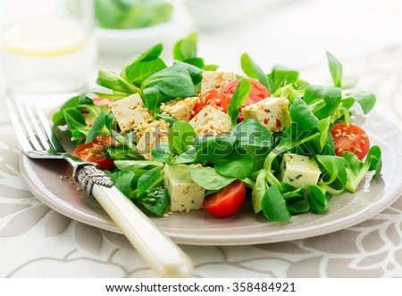 Healthy vegetarian salad made from fresh corn leafs and spicy soy cheese tofu with paprika and basil