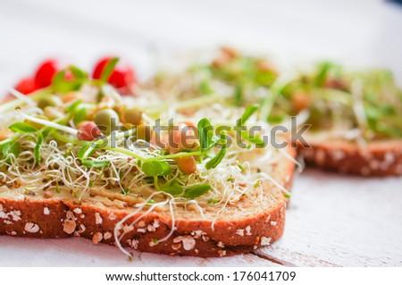 Healthy vegetarian sandwich with whole grain bread,alfalfa,hummus - stock photo