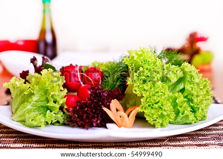healthy vegeterian food nicely decorated on plate - stock photo