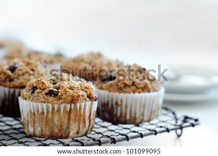 Healthy wholewheat bran muffins on cooling tray, a nutritious and fibre rich breakfast with cutlery and copy space in the background - stock photo