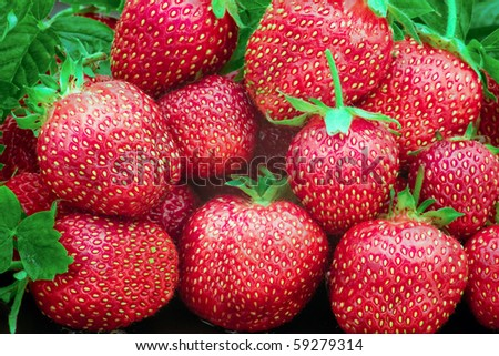 Heap of a lot of fresh red strawberries - stock photo