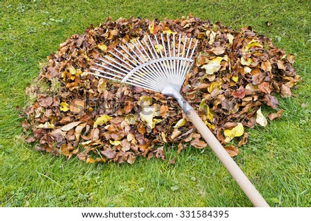 Heap of autumn leaves and rake on green garden lawn, garden works and cleaning in autumn. - stock photo
