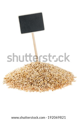 Heap of barley  with a pointer for your text,  isolated on white background - stock photo