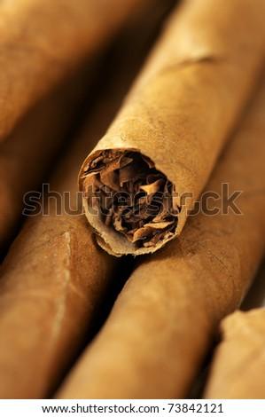 Heap of cigars close-up. Shallow DOF. - stock photo