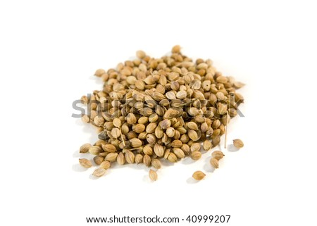 Heap of coriander seeds isolated on white - stock photo