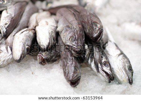 Heap of fish in ice - stock photo