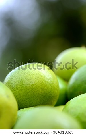 Heap of fresh lemon fruit